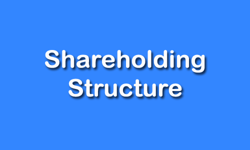 Shareholding Structure of PICL