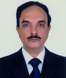 S. M. Azizul Hossain